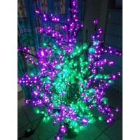 Green  Blossom Tree with Purple Flowers - 1.5m Tall