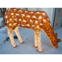 Acrylic LED Brown Feeding Deer