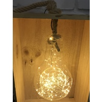 Warm White Hanging Glass Bulb Terrarium with Rope