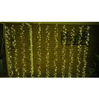 3m x 2m Warm White Cluster Curtain-green wire